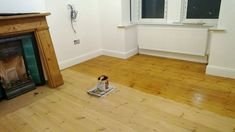 Polyx Oil Tints (3071 Honey) on Pine flooring by Restore My Floor in Portsmouth, England.