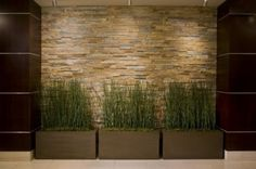This interior takes cues from natural elements. The long, stacked stone wall in the entry hall compliments the warm wood floors and the indoor grasses positioned in front of it.  This space has a strong connection to nature.