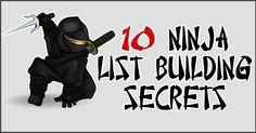 10 Ninja List Building Secrets To Grow Your List FAST by Kim Garst