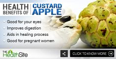Click on the image for more! #CustardApple #Fruits #Health #benefits #Healthyfood Apple Benefits, Health Benefits, Custard, Fruits And Vegetables, Apples, Healthy Recipes, Image, Cream, Fruits And Veggies