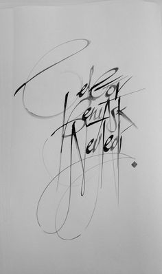Calligraphy & Lettering by Anil Darinc, via Behance