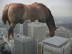Haha giant horse