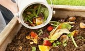There have been lots of folks asking what should go in the compost bin.     Here's a good guide~  80+ items you can compost