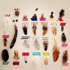 Diy Crafts Ideas : A collection of feathers.
