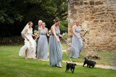 Dog flower girls arriving for a wedding at Maidwell church in Northampton Farm Wedding, Wedding Ceremony, Reception, Photography Portfolio, Flower Girls, Getting Married, Wedding Photography, Weddings, Dogs