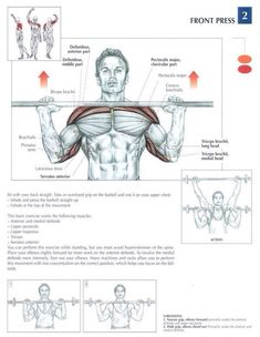 Shoulder Workout, Shoulder Exercises, Muscle Groups To Workout, Overhead Press, Muscle Fitness, Cancer, Training, Sport, Bodybuilding Nutrition
