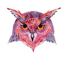 Owl / Ola Liola