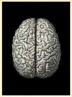 Human Brain Art Print Anatomical Brain Anatomy by TadaArtPrint Brain Poster, Heart Poster, Skeleton Love, Brain Anatomy, Brain Art, Dictionary Art, Free Prints, Quote Prints, Love Art