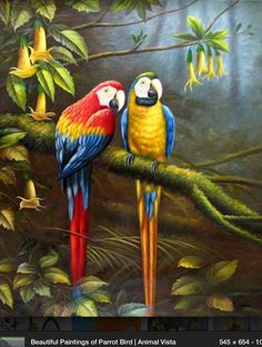 Hand Painted Beautiful Stretched/ Framed Modern Home Wall Decoration Art Canvas Oil Painting, Parrot Canvas Oil Painting Birds Painting, Art Painting, Animal Art, Paintings Famous, Parrot Painting, Art, Animal Paintings, Bird Pictures, Bird Art