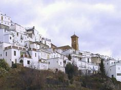 Mairena (a village in the Alpujarras) © Robert Bovington . It is not just the flora and fauna that make the Alpujarras such a s. Sierra Nevada, Andalucia, Granada, Mansions, Architecture, House Styles, Places, Flora, Beautiful