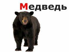Russian Alphabet for Kids - Animals