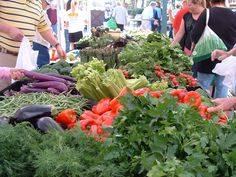 """""""An Opportunity for Community"""" - The Sarasota Farmers Market is a non-profit, organization located in Downtown Sarasota, Florida. Away We Go, How Lucky Am I, Sarasota Florida, Local Attractions, Farmers Market, Farms, Wednesday, Trips, Things To Do"""