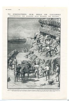 """THE GRAPHIC Newspaper dated 1915 """" To Strengthen our Hold on Gallipoli…"""