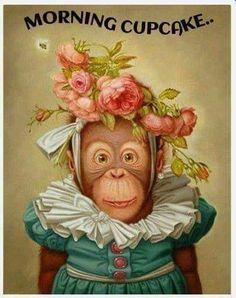 Good Morning Gif Funny, Cute Good Morning Quotes, Good Morning Funny Pictures, Morning Memes, Funny Good Morning Quotes, Good Morning Texts, Good Morning Inspirational Quotes, Morning Greetings Quotes, Good Night Quotes