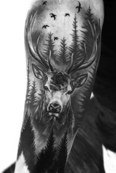 Tattoo sleeve designs & ideas are widely used by both women and men. If you're looking for the best stag tattoos, you'll love this gallery of sleeve tattoo designs. Forest Tattoo Sleeve, Animal Sleeve Tattoo, Nature Tattoo Sleeve, Forest Tattoos, Best Sleeve Tattoos, Tattoo Nature, Deer Hunting Tattoos, Deer Skull Tattoos, Deer Tattoo