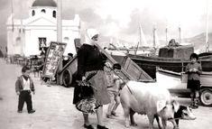 Συλλεκτικό! 35 Φωτογραφίες της Μυκόνου από τα '60s – '70s που δεν περίμενες να δεις (Pics) : Menshouse.gr Old Time Photos, Greece Pictures, Vintage Pictures, Mykonos, Animals, Animales, Animaux, Animal Memes, Animal