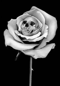 Rose and skull - I don't usually pin ones that aren't actual tattoos, but I like this.
