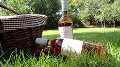 Picnic & wine tasting at Doolhof Wines in Wellington Wine Tasting, Wines, Cape, Picnic, Bottle, Mantle, Cabo, Flask, Picnics