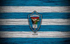Download wallpapers Dibba Al Fujairah FC, 4k, logo, UAE League, soccer, football club, UAE, Dibba Al Fujairah, creative, wooden texture, FC Dibba Al Fujairah