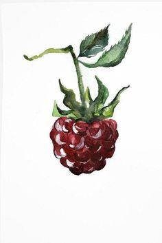 Raspberry watercolor kitchen Decor, Painting Kitchen Wall Art, food Print, Gift for her, Vegetables Printable, Fruit Drawing print