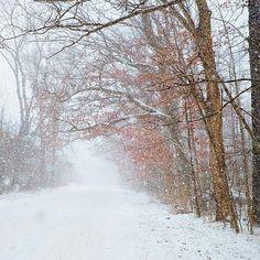 Hines Hill. #kkgroupies #pin #cvnp #roamohio #ohioexplored #cuyahogavalleynationalpark #simplepleasures #simplejoys #simplelife #winterinohio #snow #ohio #myoh #ohphotography #winter #snowglobe #summitcounty
