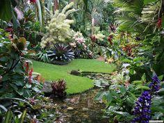 Of a tropical garden design from a real australian home gard Tropical Garden Design, Tropical Backyard, Tropical Landscaping, Tropical Plants, Backyard Landscaping, Tropical Gardens, Exotic Plants, Bali Garden, Balinese Garden