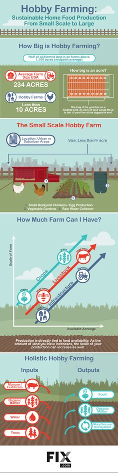 Lower your food costs by starting your own food supply. Upgrade your garden to a hobby farm!