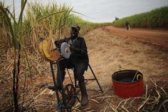 Conozca la vida de los trabajadores de la zafra en Sudáfrica. Visite nuestra página y sea parte de nuestra conversación: http://www.namnewsnetwork.org/v3/spanish/index.php