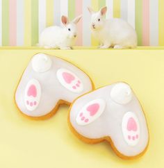 Hop into an early arrival of our doughnuts. Easter Bunny Cake, Easter Cookies, Easter Treats, Christmas Cookies, Bunny Cakes, Fancy Cookies, Royal Icing Cookies, Sugar Cookies, Iced Cookies