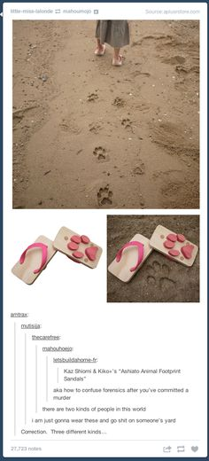 Funny Quotes, Funny Memes, Hilarious, Jokes, Funny Tumblr Comments, Tumblr Funny, Tumblr Stuff, Tumblr Posts, Animal Footprints