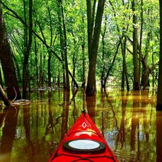 8 Amazing Places to Kayak Around Chicago 1. Skokie Lagoons The lagoons are known for being buggy, so make sure to pack your bug spray. Level of Experience: Beginner - Flat, open water paddling allows any paddler to have success on these waters. Location: 1770 Tower Rd Winnetka, IL 60093 2. Chicago River - North Shore Channel North to Baha'i Temple dam and back is approx. 10 miles round-trip Level of Experience: Beginner - Very calm, easy paddling with little to no current unless there are…
