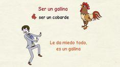 Aprender español: Expresiones con animales (nivel avanzado)