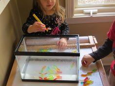 Gummy worm science | Teach Preschool