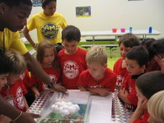 Camp Connect features hands-on, educational programs taught by trained staff members!