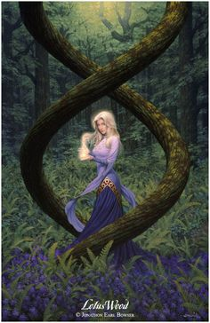 "Jonathon Earl Bowser, ""Lotus Wood"""
