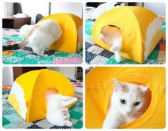 I kept seeing photos of cat tents on Pinterest and being shared on Facebook, but none of them had good instructions! I decided to make a cat tent for Luna and...