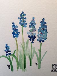 beautiful hand painted cards Grape Hyacinths Watercolor Card I by gardenblooms on Etsy