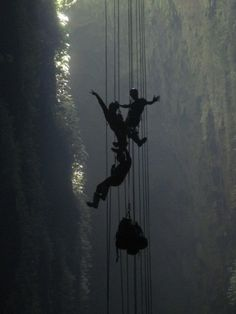 Abseiling, Caving, and Spotting Glow Worms in New Zealand Tandem Jump, Glow Worm Cave, New Zealand Holidays, Abseiling, New Zealand North, Great Wall Of China, The Beautiful Country, Beaches In The World, Adventure Travel