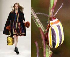 Нравится ли Вам насекомые в одежде и в украшениях? А в реале - живые? Вдохновляет? Меня - да! Делюсь с фотографиями с прекрасными, интересными нарядами - многих бы носила с радостью! А Вы? Наслаждайтесь! Вдохновляйтесь!