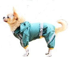 Pet's House Highlight Reflective Pet Raincoat Dog Clothes with Decorative Waterproof and Breathable (Medium, Green) -- Check this awesome image  : Dog coats