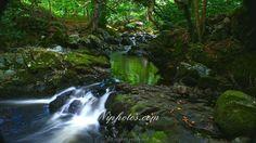 The Fairy glen Rostrevor, County Down, Northern Ireland.