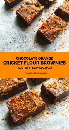 These Raw Chocolate Orange Brownies are packed full of zesty fresh orange flavour, protein, and they contain an extra special ingredient - cricket flour!