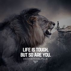 Crazy Love Quotes, Inspirational Quotes Wallpapers, Lion Quotes, Money Spells, Life Is Tough, My Point Of View, Success Quotes, Motivation Success, Go Getter
