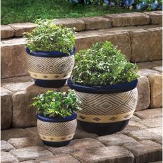 Bright blue ceramic planters show off your greenery with a delicious dose of color! This super value set includes three pots in varied sizes, all with matching abstract motif. Drain hole at bottom of each pot. Weight 13.2 lbs. Ceramic. Plants not included. Large: 12″ diameter x 8 1/2″ high; medium: 8 3/4″ diameter x …