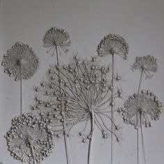 Rachel Dein - plaster casts of flowers