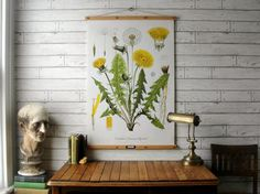 Dandelion Botanical Chart / Vintage Reproduction / Canvas or Paper Print / Oak Wood Hanger with Brass Hardware / Organic Wax Finish