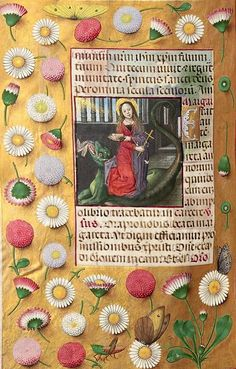Illustration Blume, Nature Illustration, Floral Illustrations, Illuminated Letters, Illuminated Manuscript, Fertility Symbols, Egg Shell Art, Medieval Dragon, Wool Embroidery