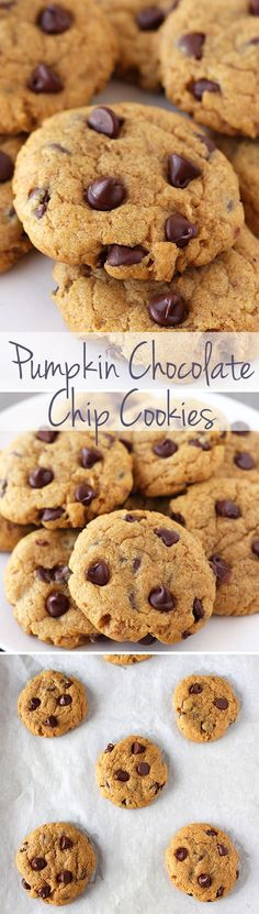 Pumpkin Chocolate Chip Cookies - these are actually soft yet CHEWY! Not cakey! And loaded with pumpkin spice flavors. they smell amazing :) Fall Desserts, Cookie Desserts, Just Desserts, Cookie Recipes, Delicious Desserts, Yummy Food, Pumpkin Chocolate Chip Cookies, Cupcakes, Galletas Cookies
