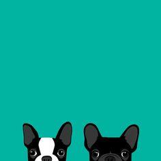 Boston Terrier and French Bulldog Art Print by annewashere French Bulldog Wallpaper, French Bulldog Drawing, Dog Wallpaper Iphone, French Bulldog Puppies, French Bulldogs, Boston Terrier Dog, Dog Illustration, Cute Cartoon Wallpapers, Cute Art