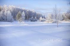 Зимний пейзаж на окраине деревни.№28.
